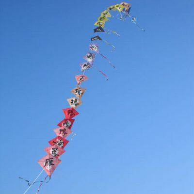 津田の松原凧揚げ大会